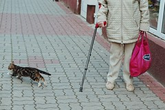 (paduszynski) Tags: street cat bag sony poland oldwoman dull crutch koszalin a6000 sel50f18