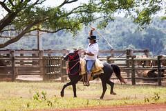 gaucho at Recanto Ecologico Rio da Prata, Bonito, Brazil (LeeHoward) Tags: ranch brazil cowboy bonito matogrossodosul vaquero
