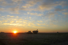 Day 303 - central Illinois sunrise (Mark.Swanson) Tags: sky tractor field clouds sunrise illinois farm horizon grain harvest bin agriculture cooksville mcleancounty