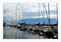 a quiet day at the marina (overthemoon) Tags: blue autumn lake mountains alps port boats schweiz switzerland suisse cloudy harbour svizzera lman pully lakegeneva vaud romandie pullyport utata:project=tw442