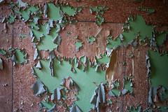 Texturen (Sebastian Schwinkendorf) Tags: wald brandenburg kaserne vogelsang lostplaces geisterstadt