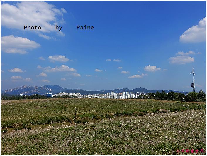首爾 天空公園 (36).JPG