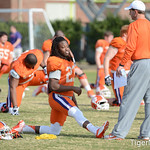 Andre Ellington Photo 12