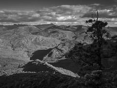 looking out (pikeyc) Tags: blackandwhite bw landscape australia olympus tasmania omd westcoasttasmania em5 mtmurchison
