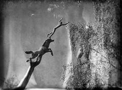 DSCF1520 (Marat Elkanidze) Tags: stockholm sculptures millesgarden handsart