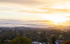 Good Morning Springfield (atgraham) Tags: trees fall yellow oregon sunrise canon maple o stadium go ducks u springfield autzen