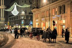 Christmas in Vienna 4 (agruebl) Tags: schnbrunn vienna wien christmas nightphotography schnee winter snow weihnachten austria sterreich nikon stephansdom afterdark fiaker ststephanscathedral weihnachtsbeleuchtung nikond300