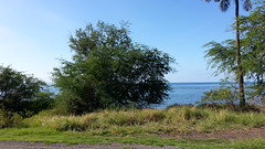 20141109_093206 (dntanderson) Tags: hawaii maui 2014 november09