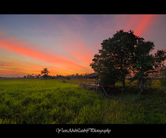 Pondok usang ditepi sawah (YasirLatib (come back)) Tags: malaysia asia everyone autumn beach black blue bw canon clouds color day fall family film flower friends fun garden geotagged green holiday instagramapp iphoneography island photography nature night nikon square squareformat summer sun sunset photo photographer photograph vacation travel sea sky water tree trees yellow yasirlatib landscape photos kedah boat sunrise trip yasir yasirabdlatib macro love light