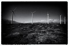 Edited in Photoshop-9 (munn1) Tags: 201703palmsprings nikon nikor nik california usa blackandwhite windmills desert bluesky march i10 deserthotsprings week92017 52weeksthe2017edition weekstartingsundayfebruary262017 week9theme