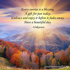 quote-liveintentionally-every-sunrise-is-a-blessing (pdstein007) Tags: quote inspiration inspirationalquote carpediem liveintentionally