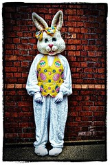 Easter Bunny (tina777) Tags: easter bunny rabbit ears teeth fur nose bow waistcoat yellow eggs daisies gloves feet outfit character fun brick wall photoshop elements blending 13 topaz adjust clarity ononesoftware fujifilmxt10