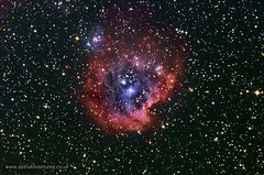 NGC 2174 - Monkey Nebula (Star Watcher) Tags: qhy8l ngc2174 themonkeynebula skywatcher eq6 quattro astrophotography nebula stars astrometrydotnet:id=nova2001833 astrometrydotnet:status=solved