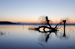 Sunset (carlaroganti) Tags: trasimeno lake sunset italy umbria