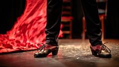 Chaussures (The French Travel Photographer) Tags: chaussure rouge action details shooting repetition couleurschaudes flickrcomsebmar danser danseurdanseuse détail casapatas flamenco ©sébmar instagramsebas personne