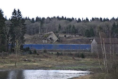 Ruinen Werk Tanne