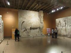 IMG_4314 (clare_and_ben) Tags: 2017 hydepark chicago illinois museum orientalinstitute josie josephine clare dursharrukin khorsabad assyria assyrian sargon sargonii lamassu