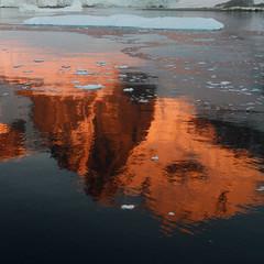 Reflected (Danae Sheehan) Tags: rock antarctic colour pattern nature light detail square geology orange bright