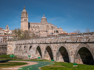 Cathedral and Roman bridge (Salamanca, Spain)