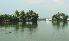 Resdence by the Water (Shrayansh Faria Photography) Tags: backwaters waters trees lush green sky