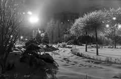 после ледяного дождя (s.luzin) Tags: film olympus35sp odintsovo ilford zuiko night winter