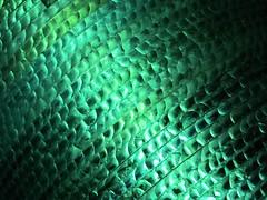 Green Light (Heaven`s Gate (John)) Tags: light delhi india wedding colour color detail johndalkin heavensgatejohn green night