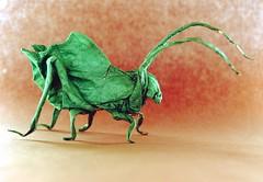 Leaf katydid - Brian Chan (Egor Prokhorenko) Tags: leaf katydid brian chan origami insect tissue paper art