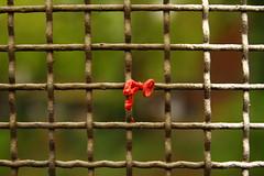 Karneval vorbei (raumoberbayern) Tags: munich münchen bahn bridge brücke eisenbahnbrücke luftballon balloon red green rust rost rot grün dof squares kästchen robbbilder urbanfragments