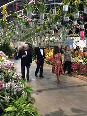 2017-03-10_9400i_waldor (lblanchard) Tags: 2017flowershow displaygarden waldor