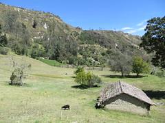 Quilotoa loop-72
