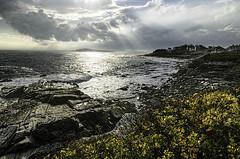 Sunshine over the Water (Linda Kosidlo) Tags: rocks maine wideangle capeelizabeth