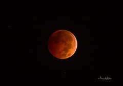 Lunar Eclipse October 8 2014 (Terry Aldhizer) Tags: moon night eclipse terry total lunar diamondclassphotographer flickrdiamond aldhizer terryaldhizercom