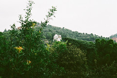 Little house in the hills (Nonions) Tags: trees house mountains film 35mm landscape view pentax documentary hills 35mmfilm gaudi pentaxk1000 guell parkguell filmphotography