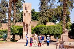 -     -  -    -    (Esttua de Ramss, O Grande - Museu a cu aberto de Memphis - Met Rahina, Al Badrasheen, Giz - Egito) (giancornachini) Tags: africa desert egypt middleeast pharaoh egito deserto   fara  orientemdio