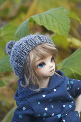 A little pompom (shibya(   ` )) Tags: ball doll may bjd jointed bluefairy shinyfairy