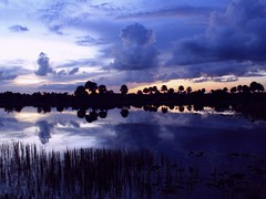 Blue Bayou (PelicanPete) Tags: blue sunset usa reflection nature beauty skyscape landscape still bravo darkness unitedstates florida naturallight calm bluehour tranquil cloudscape bluebayou southflorida sawgrass bluegrey lakescape naturalcolor edgeoftown di