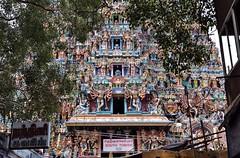 Gopuram(Tower gate) of Meenakshi Amman Temple