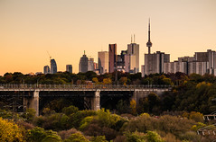 from Chester Hill (Brady Baker) Tags: city bridge autumn trees urban toronto ontario canada leaves skyline ttc hill lookout viaduct danforth chester valley don lanscape bloor