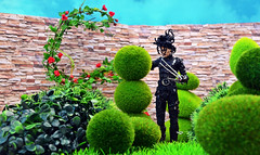Edward Scissorhands (RK*Pictures) Tags: flowers red black green garden scissors romantic edwardscissorhands scissorsforhands