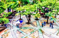 Parque Berrio (walterguisao) Tags: shift tilt medelln metrodemedelln walterguisao