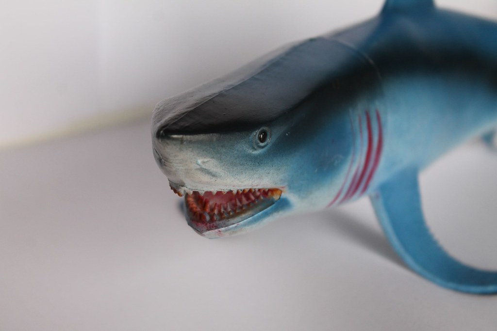 Jaws Rubber Shark Toy : The world s best photos of sharks and toys flickr hive mind