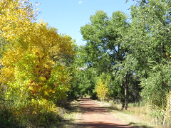 Along the River (Patricia Henschen) Tags: arkansasriver canoncitycolorado riverwalk usroute50