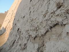 DSCN5490 (bentchristensen14) Tags: uzbekistan citywall khiva ichonqala