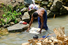 Laundry, Kerala, India, 2014 (Fabionik) Tags: india kerala namaste 2014 vellanad