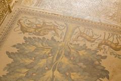 IMG_2108 (Alex Brey) Tags: architecture israel palestine jericho umayyad قصر هشام قصرهشام khirbatalmafjar qasrhisham