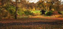 Just a Walk in the Park (scrimmy) Tags: autumn trees scotland colours seasons dundee camperdownpark