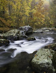 Autumn Flow (baldwinm16) Tags: autumn wild fallleaves usa mountains fall nature beautiful creek river outside outdoors nationalpark october stream fallcolor unitedstates tn tennessee scenic autumnleaves wilderness nationalparkservice smokies appalachia tranquil greatsmokymountains autumncolor littleriver greatsmokymountainsnationalpark flowingwater naturelandscape middleprong appalacianmountains sceniclandscape autumnlandscape natureofthingsphotography