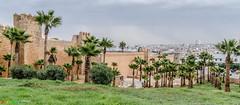 Rabat - Kasbah de Oudaia (mara.dd - www.marasweltreisen.de) Tags: africa morocco afrika marokko rabat afrique  kasbahdeoudaa