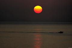 """Speedboat at Sunrise"" (Pensioner Percy, very slow at the moment) Tags: cruise sunrise speedboat montecarlo monaco pocruises d7100 tamron70300mmlens pooceana nikond7100"