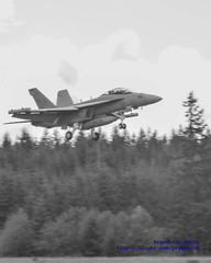 VAQ-129 EA-18G on Final to OLF Coupeville (AvgeekJoe) Tags: blackandwhite bw usa plane airplane blackwhite airport aviation washingtonstate vikings usnavy usn hdr nra warplane airfield growler